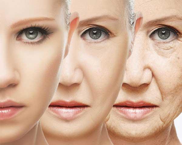 Åldrande - granatäpple föryngrar huden och motverkar rynkor.